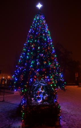 Всенощное бдение накануне праздника Рождества Христова